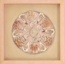 Annabella Proudlock - Coral Mandala # 2 (n.d.), Annabella and Peter Proudlock Collection